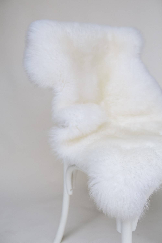 Sheepskin Rug / $15